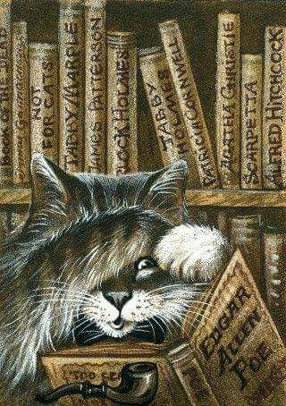 kitty-reading